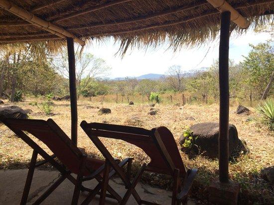 Hotel Finca del Sol: View from the Bamboo Lodge (dry season)