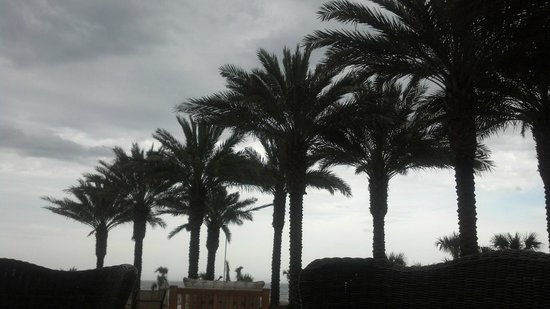 Omni Amelia Island Plantation Resort: Dark skies in paradise