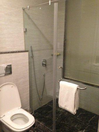 Park Ascent : Toilet/Bathroom