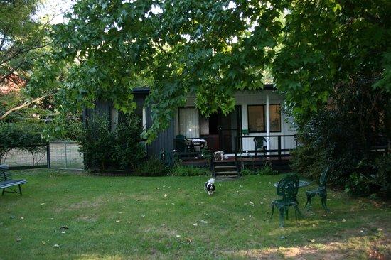 """Tyntynder Lodge Garden Cottages: Backyard and """"dog playground"""""""