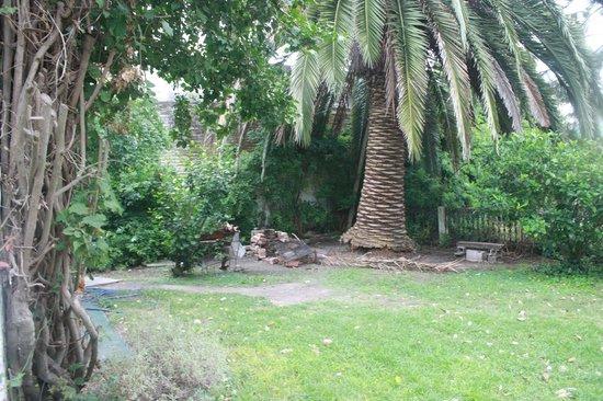 Posada Portones de Carrasco: planta del patio