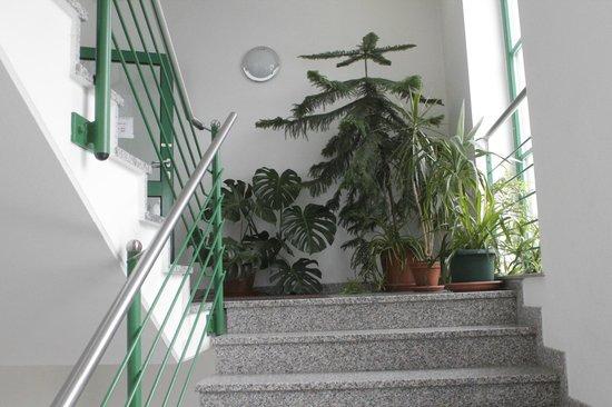 Haus Am See: Treppenhaus