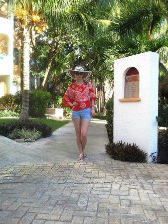Real Playa del Carmen: На территории