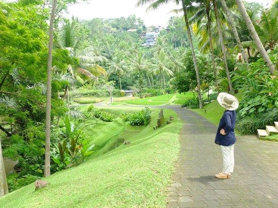 Four Seasons Resort Bali at Sayan: 癒される〜