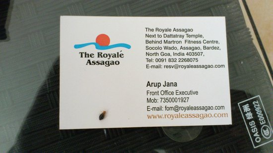 The Royale Assagao: BedBug Caught in Hotel Room