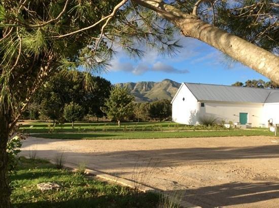 Springfontein Eats: location