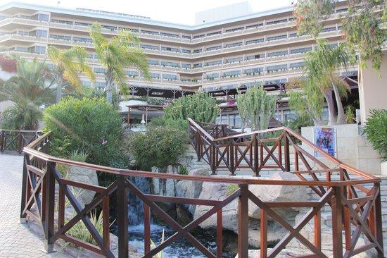 Four Seasons Hotel : территория
