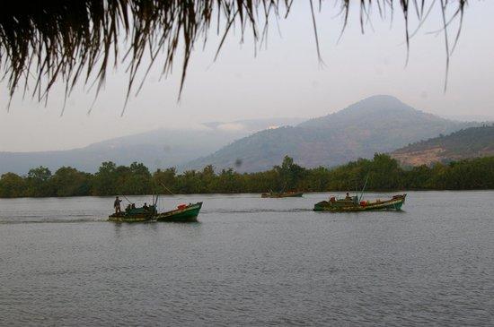 Les Manguiers: bateaux de peche au petit matin