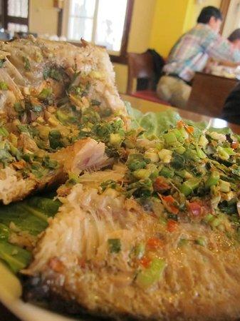 Qingjing Lumama: 雲南包料魚