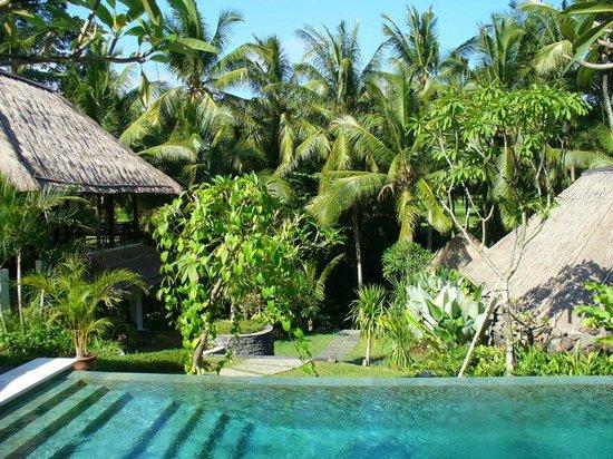 Villa Kanti Prices Reviews Ubud Bali Tripadvisor