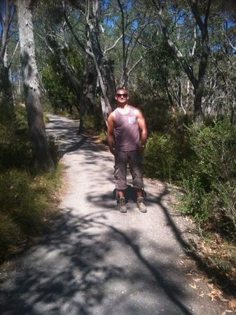 Waterfall Gully: the walk up. very scenic