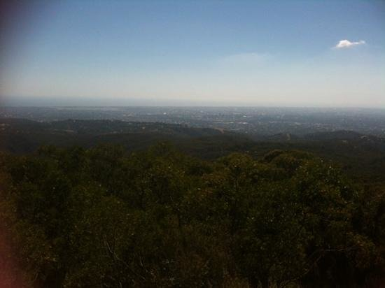 Waterfall Gully: views from the top of mount lofty