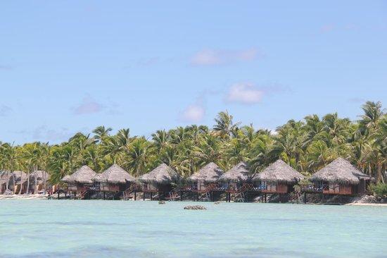 Aitutaki Lagoon Resort & Spa : The overwater bungalows