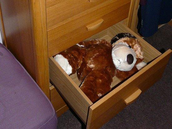 Castleview Bed & Breakfast : Ready Teddy