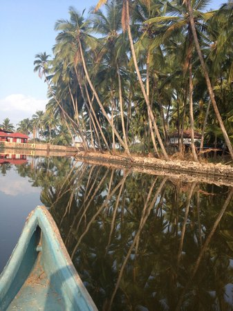 Kannur Beach House: Backwater to the side of house.