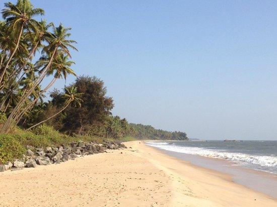 Kannur Beach House: Beach ten minutes walk away.