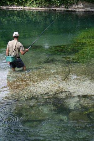 Le Vivier: Pêcheurs en action