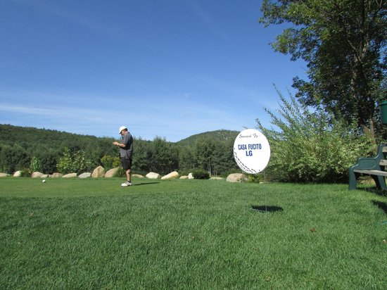 Cronin's Golf Resort : mountain view