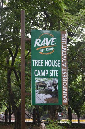 Rainforest Park: Camp Site
