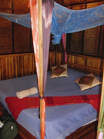 Thongbay Guesthouse: Our double bed with a mosquito net above