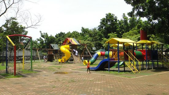 Rainforest Park: Playground