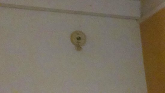 Knights Inn Clearwater: I think this is where the smoke detector goes