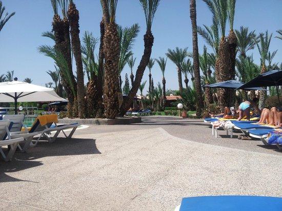 Royal Decameron Issil: pool area