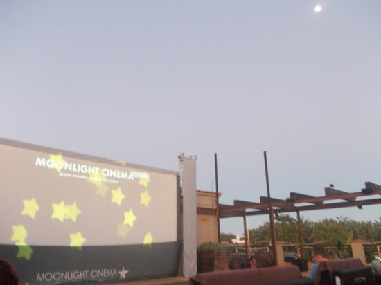 Moonlight Cinema : Waiting for the film to start under the stars