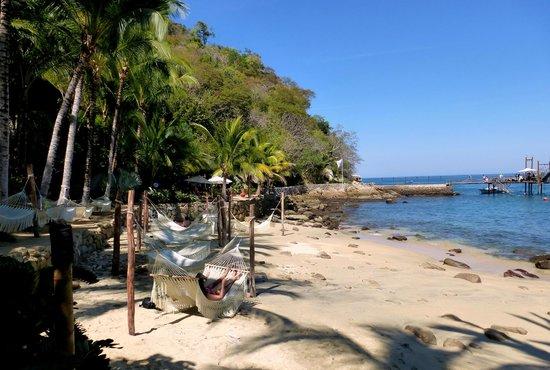 Vallarta Adventures - Las Caletas Beach Hideaway : Laze in a hammock