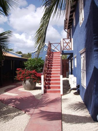 Blachi Koko Apartments Bonaire: Blachi Koko Courtyard