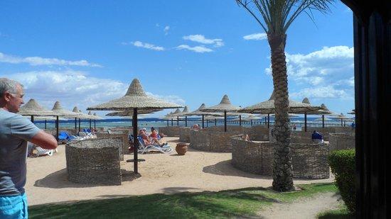 Club Magic Life Sharm el Sheikh Imperial: the beach