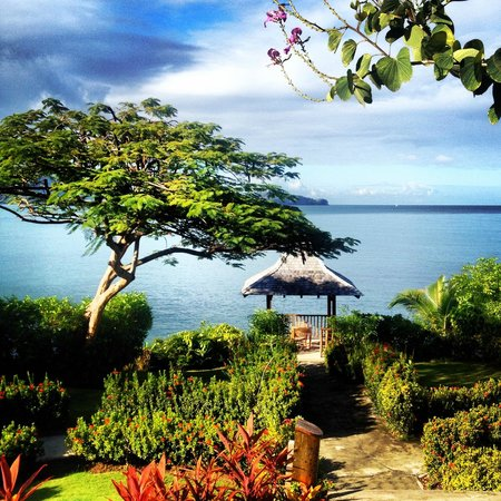 Calabash Cove Resort and Spa: View of gardens
