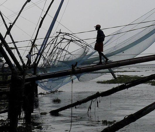Delight - Fort Kochi: Chinese fishing nets in the harbour