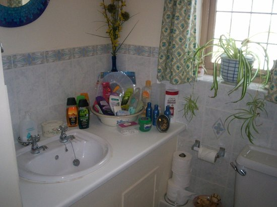 Muffins Bed and Breakfast: choice of shower products
