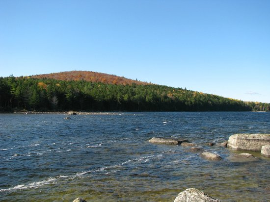 Grand Lake Stream, ME: Farm Cove Mountain, fall