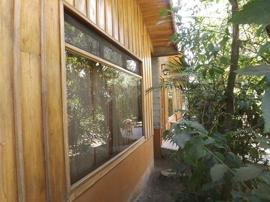Monteverde Villa Lodge: Outside the room