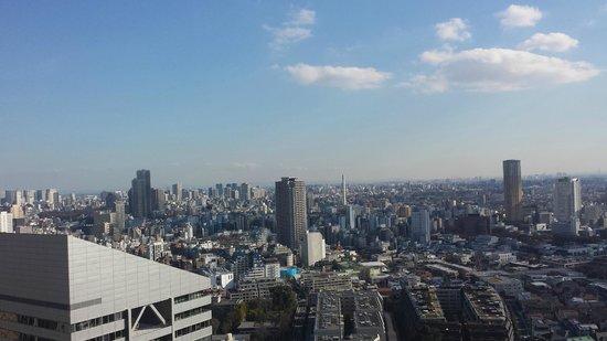 Cerulean Tower Tokyu Hotel : panorama day
