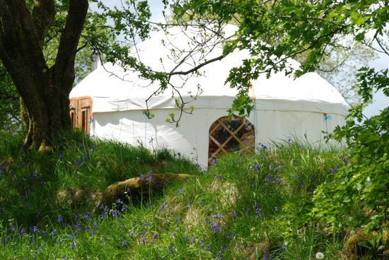 The Yurt Farm