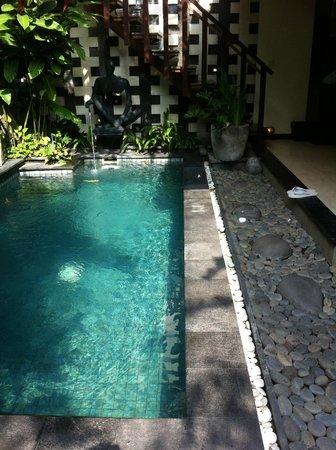 The Bali Dream Villa Seminyak: Our private pool in villa