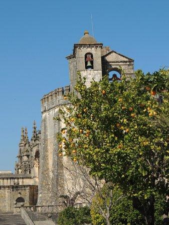 Convento de la Orden de Cristo: Pomar no exterior