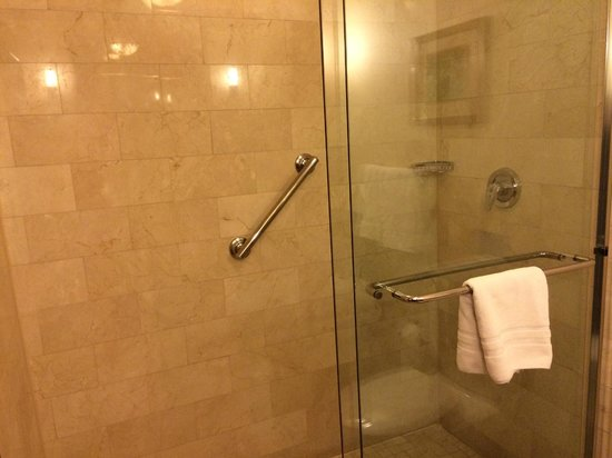 Viana Hotel & Spa, BW Premier Collection: Shower