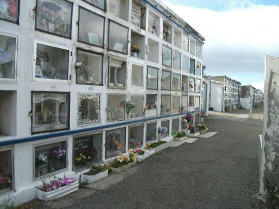Cementerio Municipal: Cemetery