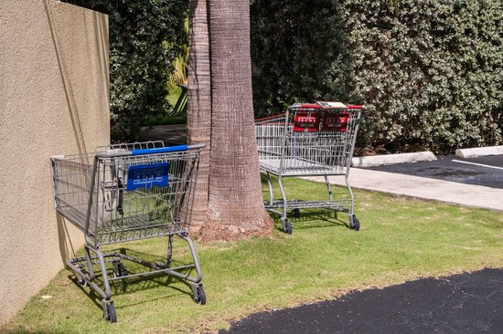 Sunshine Suites Resort: Shopping Carts to be Gathered