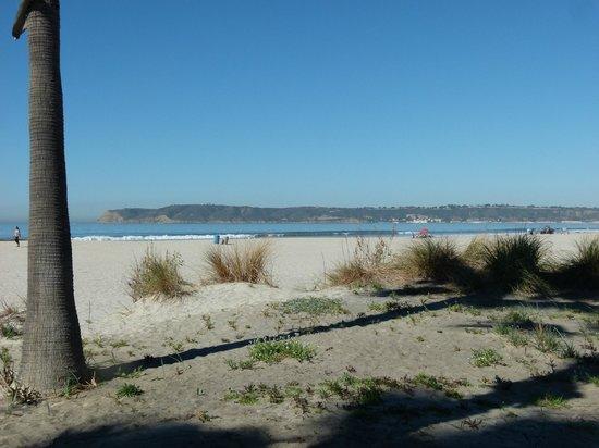 Coronado Municipal Beach: Coronado Beach