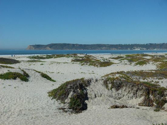 Coronado Municipal Beach: View from the Road