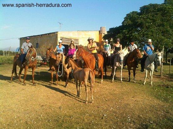 Centro de Enseñanza de Español La Herradura: Activities: horseback riding