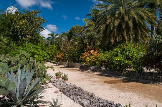 Queen Elizabeth Ii Botanic Park East End Cayman Islands