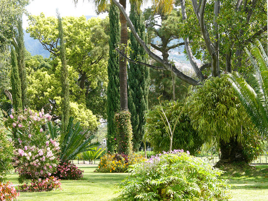 Quinta Jardins do Lago : Our Quinta Botanical Gardens