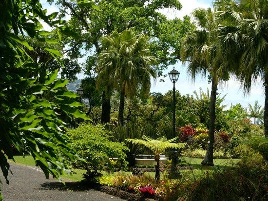 Quinta Jardins do Lago : Our Beautifull Gardens