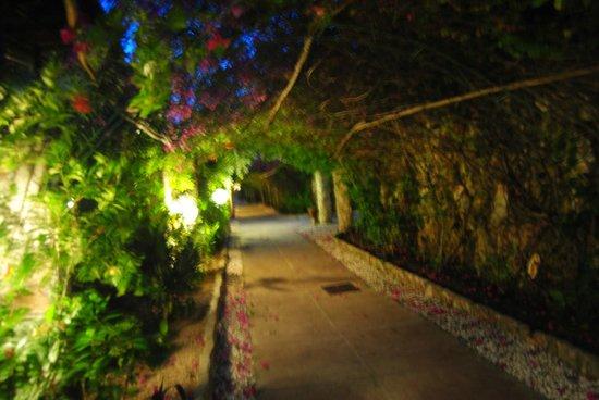 Palumboreef Beach Resort: bellissimo viale